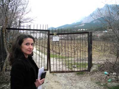 А. Шаульская: «Парковую зону под школу не дали, теперь и в этом прежде согласованном участке отказывают»